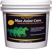 Equi-Sential® Max Joint Care